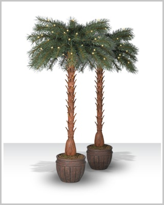 Breezy Bay Palm Tree