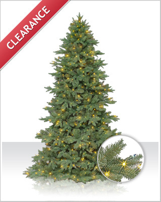 Sequoia Fir Christmas Tree