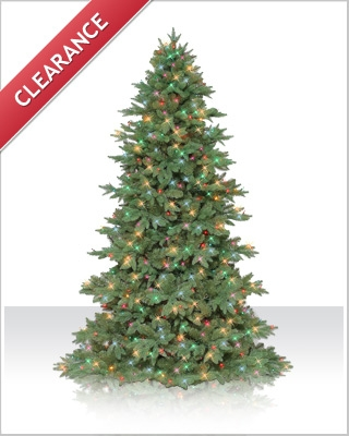 7.5 Foot Sequoia Fir Christmas Tree with Indoor Multi Lights