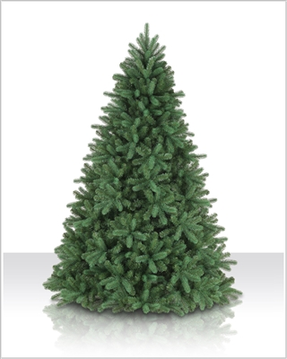 9 Foot Unlit Royal Douglas Fir Christmas Trees