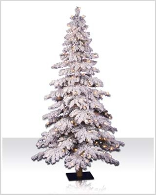 6 ft Flocked Spruce Clear Lit Christmas Tree | Christmas Tree Market