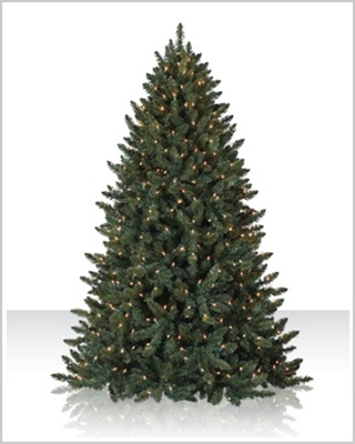 8 Foot Balsam Spruce Christmas Tree with Multi Lights