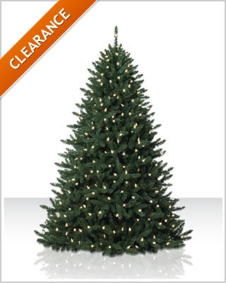 5.5 Foot Eastern Spruce LED Artificial Christmas Tree