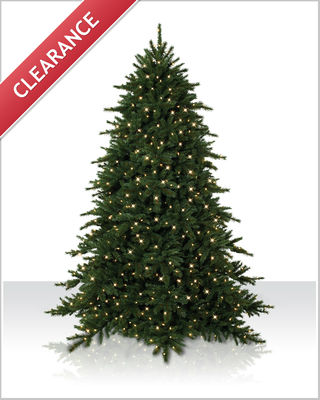 12' Balsam Spruce Tree with Clear Lights | Christmas Tree Market