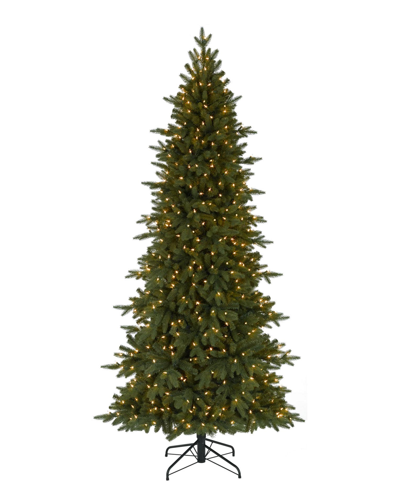 6.5 Foot Kennedy Fir Clear Christmas Tree | Christmas Tree Market