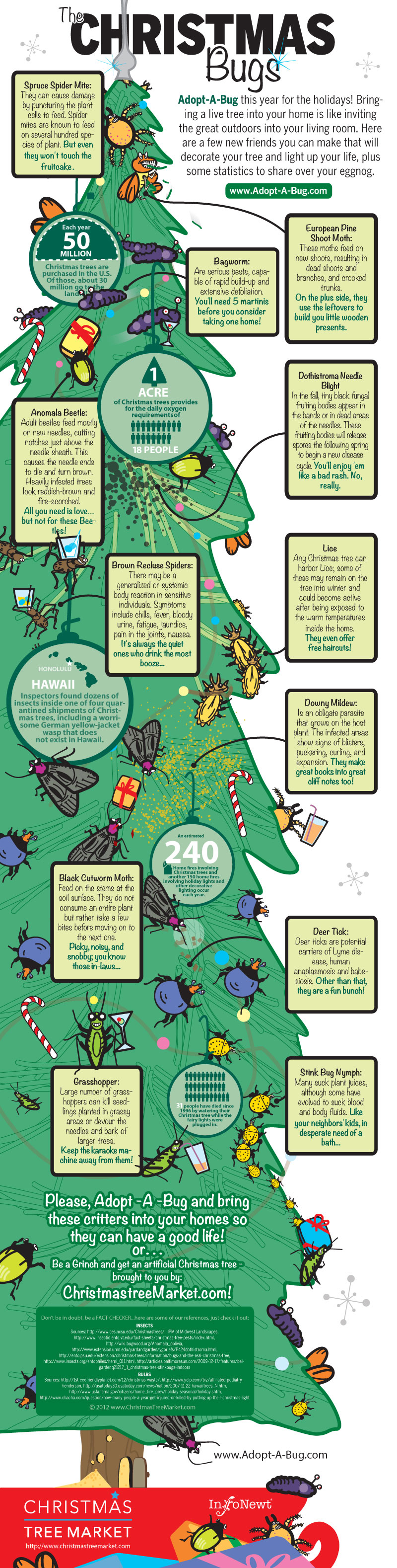 Adopt a Bug for Your Live Christmas Tree Infographic
